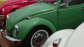 VW CLASSIC BEETLE CLUB KANDY RALLY TO HANTHANA HULAN GROUNDS SRI LANKA