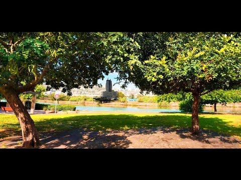 """Классный парк отдыха и пикников в хайфе """"Мааган ха дайг""""4к"""