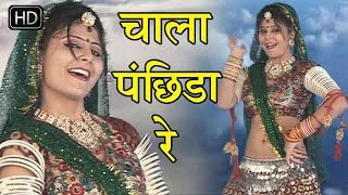 Chal Pachida rajasthani superhit song 2016 - चाल पंछिड़ा रे - Super Hit Songs 2016 Rajasthani