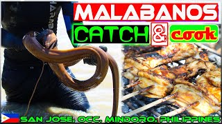 EP51 - Malabanos Eel Catch and Cook | Eel Barbecue | Occ. Mindoro Philippnes