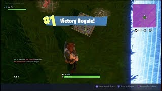 My Second Win   Fortnite Battle Royale
