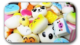 😱 ULTIMATIVE SQUISHY COLLECTION - Größte Squishies Sammlung EVER 😁