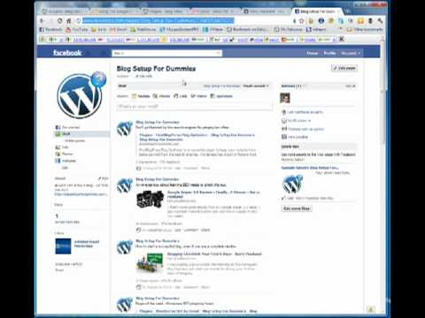 Blog Setup - Social Media Widget Wordpress Plugin
