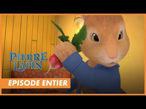 Pierre lapin dessin anim episode 1 le voleur de radis youtube - Dessin anime les pingouins ...