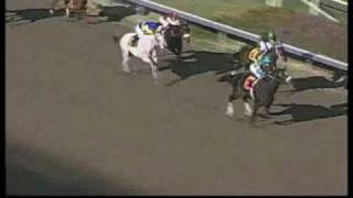 Zenyatta: Race 2, Allowence 12/15/2007