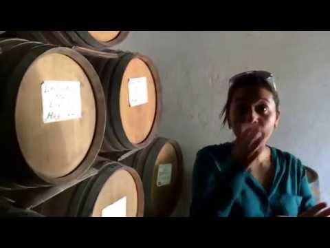 Conociendo una destilería de tequila artesanal en Sayula, Jalisco.