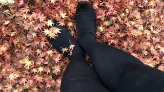 Wearing Opaque Tights Walking on Fall Leafs without Shoes