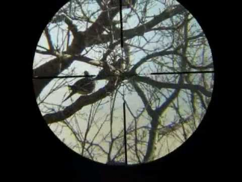 Scope Cam BSA Tactical Mil Dot 6-24x40 AO Scope