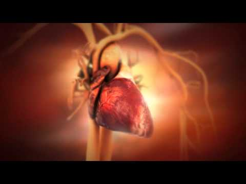 Heart Disease: Risk Factors
