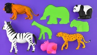 Learning Zoo Animals and Sea Animal Names For Kids Educational Fun Video For Kids
