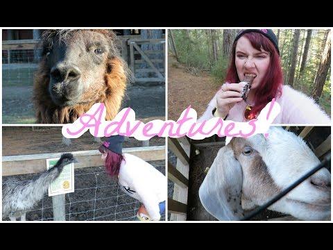HANMER SPRINGS ADVENTURE | Exploring, Cute Animals & Hot pools!