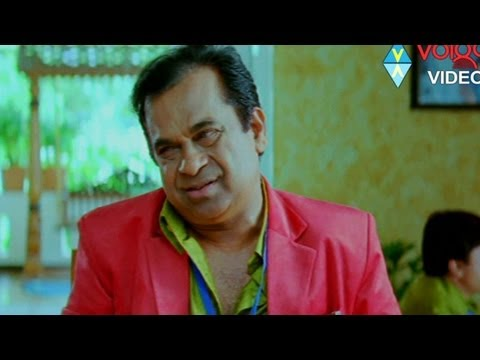 Brahmanandam Hilarious Comedy Scene From Varudu video