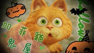 【安啾(ゝ∀・)】摸魚極短篇 ✰ 加菲貓鬼屋第一代