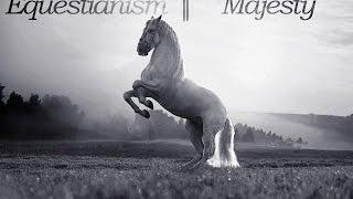 Equestrianism || Majesty