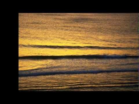 Diary Of Dreams - Requiem 4.21