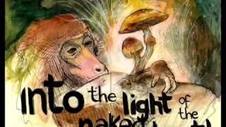 True Hallucinations Audio Book by Terence McKenna Original   Full 140517 9.14.32