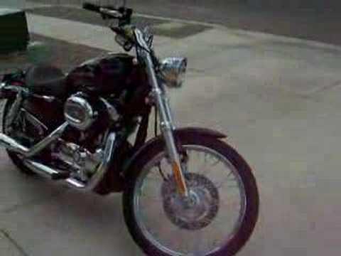 2007 Harley Davidson XL 1200 Custom Sportster