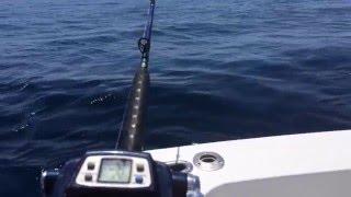 Watch Alabama Gulf Of Mexico video