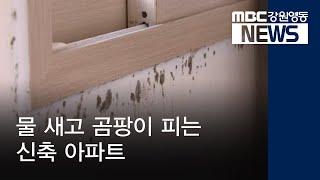 R)물 새고 곰팡이 피는 신축 아파트