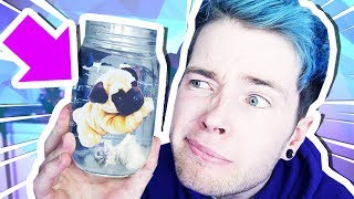 GROWING MY OWN PUG?!?!