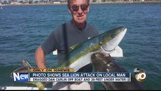Photo shows sea lion attack on San Diego man