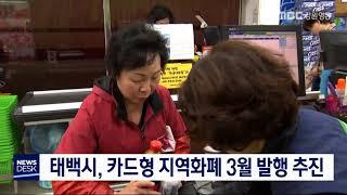투/태백시, 카드형 지역화폐 3월 발행 추진