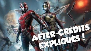 ANT-MAN 2 EXPLIQUÉ!!! - SPOILER #MCU