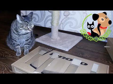 Игрушки для кота своими руками 91