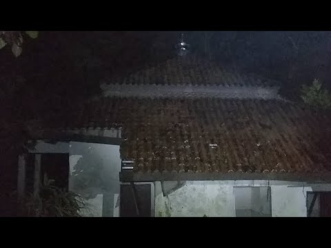 Masjid Terbengkalai Di Hutan Gunung Tugel