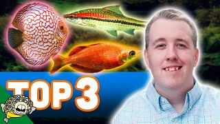 Our Top 3 Aquarium Fish from my store Aquarium Co-Op Located in Edmonds Washington.