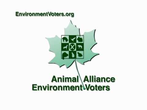 Animal Alliance Environment Voters factory farming radio advertisement