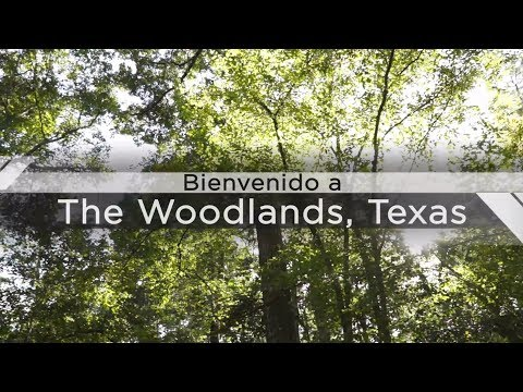 Casas en The Woodlands Texas, Expertos en Bienes Raices