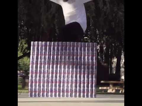 Poppin' over 102 cans by @toreypudwill 🎥: @aleks_lewandowski | Shralpin Skateboarding