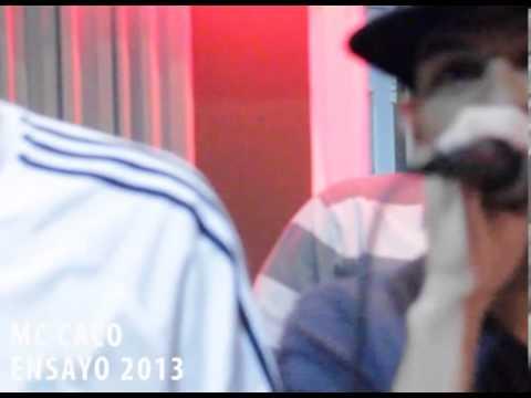 Mc Caco Ensayo 2013
