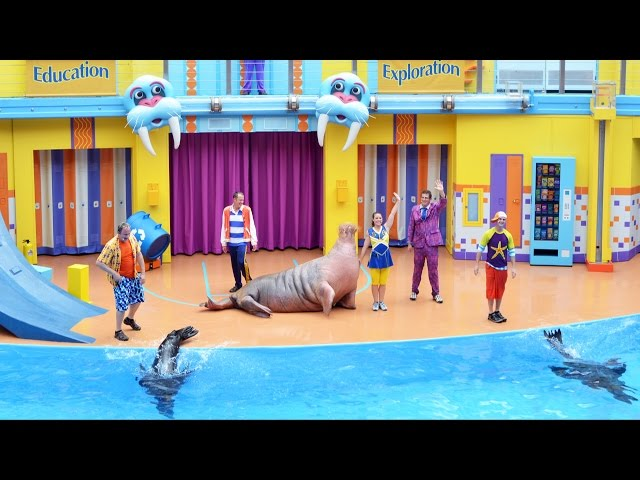 Clyde & Seamore's Sea Lion High Debuts at SeaWorld Orlando - Premiere Show Highlights