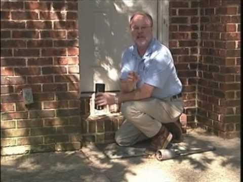 Eliminex 732-309-4209 Free Termite Inspection Essex County NJ -  New Jersey Pest Control