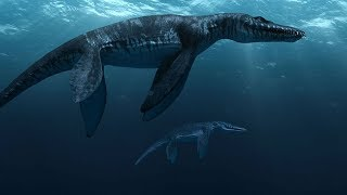7 Dinosaurios Marinos Más Grandes Del Mundo
