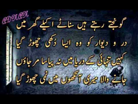 Urdu Shairy (My Words With My Voice (ADNAN))