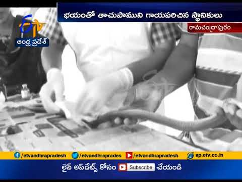 Operation Performed To Cobra | By West Godavari Doctors