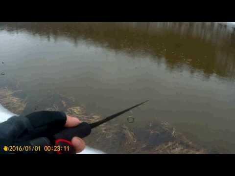 рыбалка бери  верхней москва реке видео