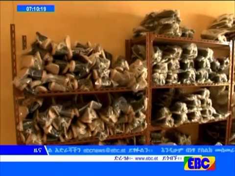 EBC News - Ethiopian News 2017