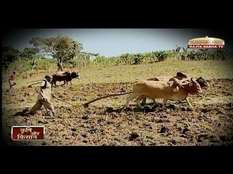 Nazariya - Agriculture in India