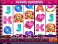 True Love slot super win - slot game win