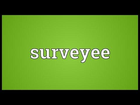 Header of Surveyee