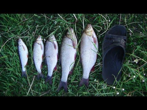 киров рыбалка на быстрице