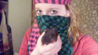 Watch Troggs Hot Days video
