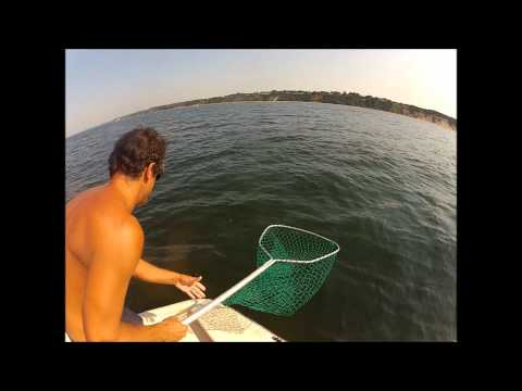 LONG ISLAND SOUND FISHING