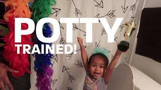Potty Train A Toddler in 22 Easy Steps