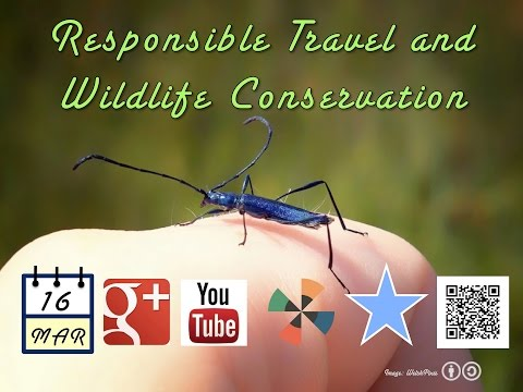 Responsible Travel and Wildlife Conservation (March 16)