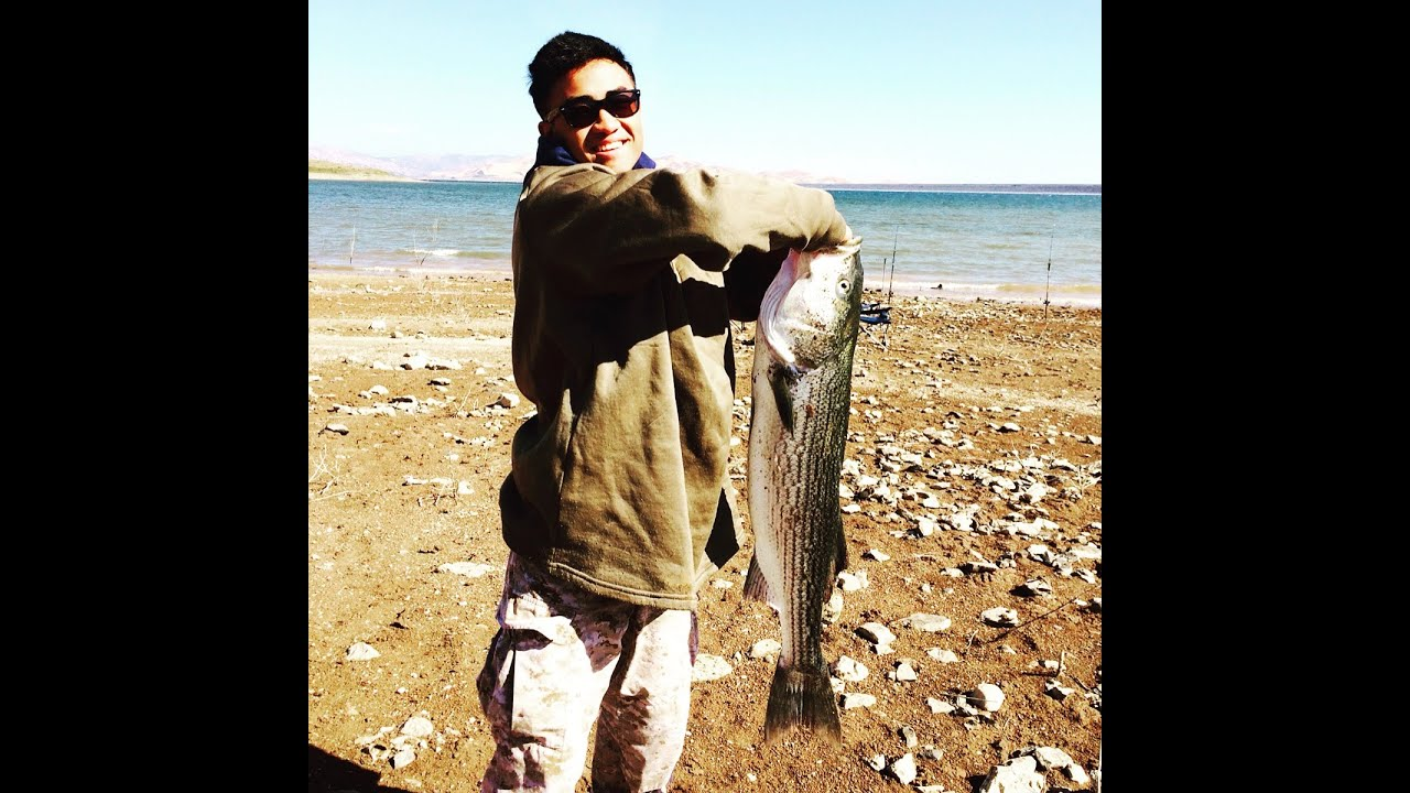 Striper Fishing at San Luis Obispo